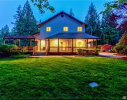 24520 NE 196th St, Woodinville image