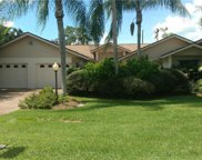 14687 Triple Eagle  Court, Fort Myers image