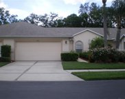 6341 Stone River Road, Bradenton image