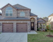 1636 Scarlet Crown Drive, Fort Worth image
