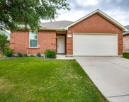 1428 Waterford Drive, Little Elm image