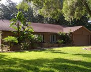 2201 Greenhills Drive, Valrico image