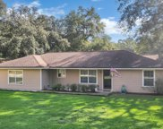 2289 HIDDEN WATERS DR W, Green Cove Springs image