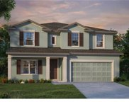 13314 Blossom  Valley Drive, Clermont image