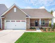 393  Praline Way, Fort Mill image