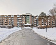 1243 E Baldwin Lane Unit #607, Palatine image