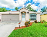 11011 Freemont Drive, New Port Richey image
