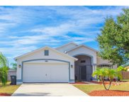 10535 Juliano Drive, Riverview image