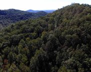 Painter Creek Road, Travelers Rest image