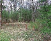 Ewing, Cedar Creek Twp image