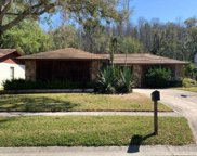 4210 Summerdale Drive, Tampa image