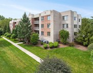 7831 West 157Th Street Unit 304, Orland Park image