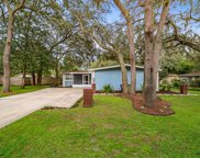 12919 Woodleigh Avenue, Tampa image