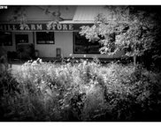 327 S RIVER  RD, Cottage Grove image