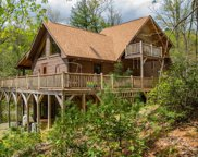 1625 Staghorn Road, Purlear image