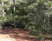 TBD Highway 917, Nichols image