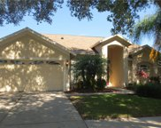 16504 Lake Heather Drive, Tampa image