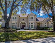 9126 Great Heron Circle, Orlando image