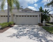 8612 Egret Point Court, Tampa image