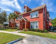 10528 Windsor Lake Court Unit 38, Tampa image