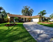 4116 Rolling Springs Drive, Tampa image
