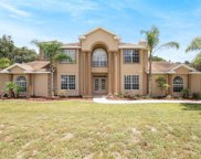 11302 Hoot Owl Court, Riverview image