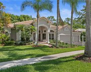 10106 Radcliffe Drive, Tampa image