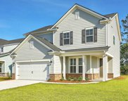 113 Cotesworth Court, Summerville image