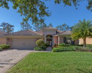 47 THICKET CREEK TRL, Ponte Vedra image