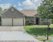 2505 Mountain Cove, Hoover image