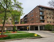 2317 North Neva Avenue Unit 406A, Chicago image