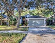9610 Fredericksburg Road, Tampa image