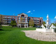 7021 W Touhy Avenue Unit #308, Niles image