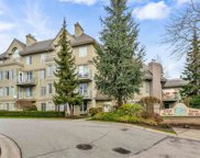 12125 75a Avenue Unit 215, Surrey image