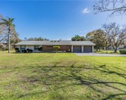 2406 Meadowbrook Drive, Lutz image
