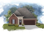 41294 Hackett Canal Dr, Gonzales image