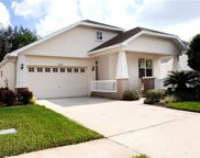 19407 Melody Fair Place, Lutz image