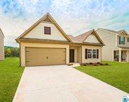 30 Homestead Ln, Springville image