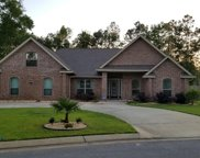 6111 Dollarweed Dr, Pace image