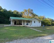 147 Evelyn St, Trussville image