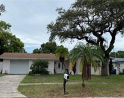 1736 Greenlea Dr, Clearwater image