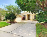 13206 Fox Glove Street, Winter Garden image