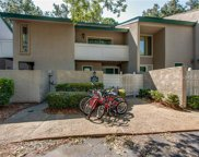 19 Stoney Creek  Road Unit 294, Hilton Head Island image