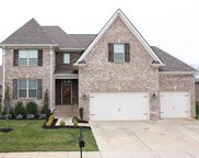 3017 Grunion Ln, Spring Hill image