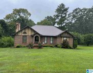 3267 Karl Daly Road, Irondale image