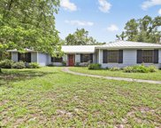 1518 FRUIT COVE WOODS DR, St Johns image