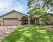 11403 Country Oaks Drive, Tampa image