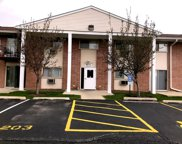 703 East Fullerton Avenue Unit 201, Glendale Heights image