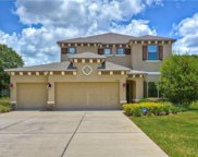 15609 Howell Park Lane, Tampa image
