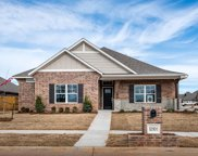 12101 SW 46th Street, Mustang image